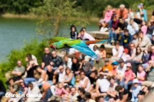 Parc ornithologique des Oiseaux